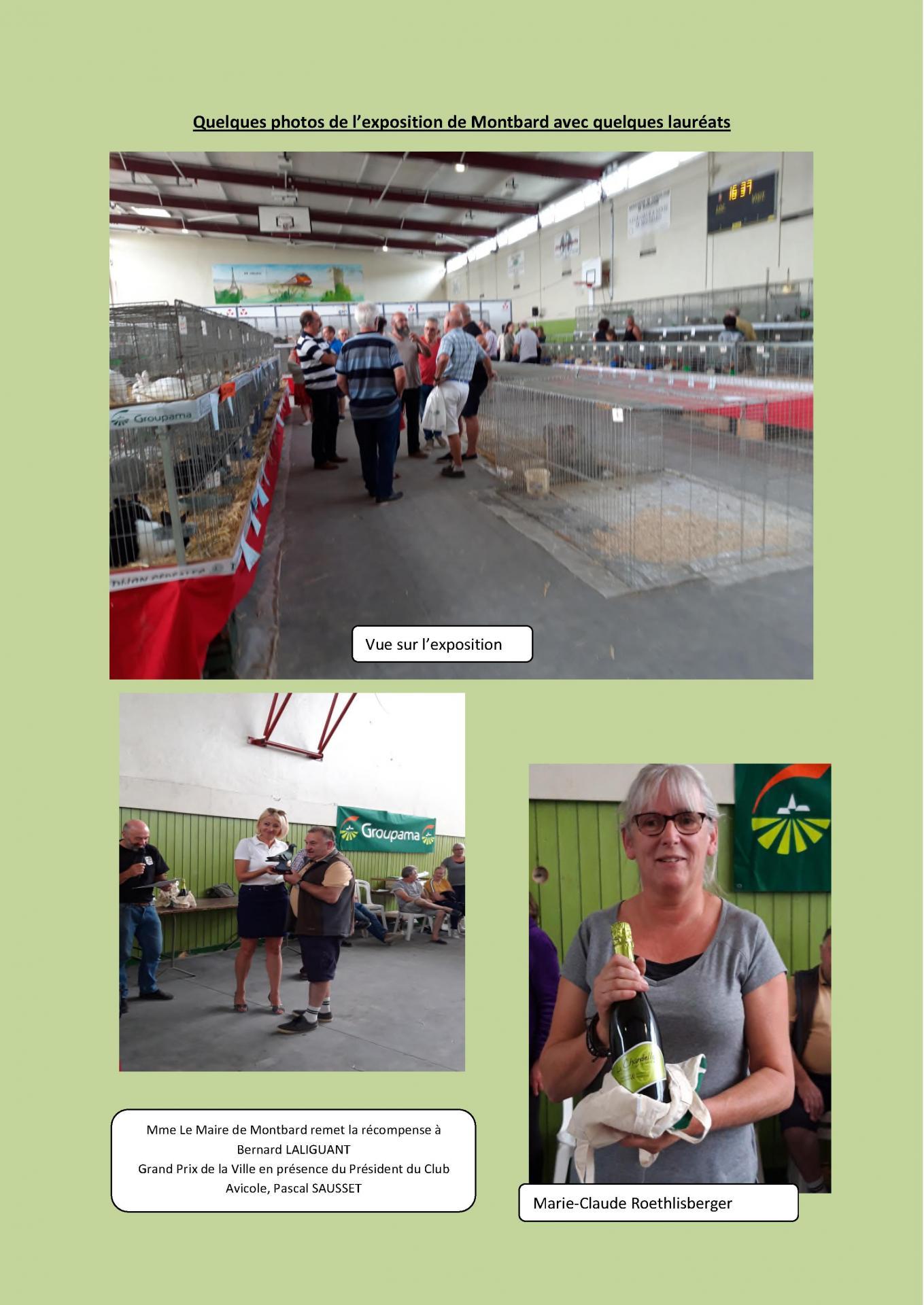 Quelques photos de l exposition de montbard pour le site de la region